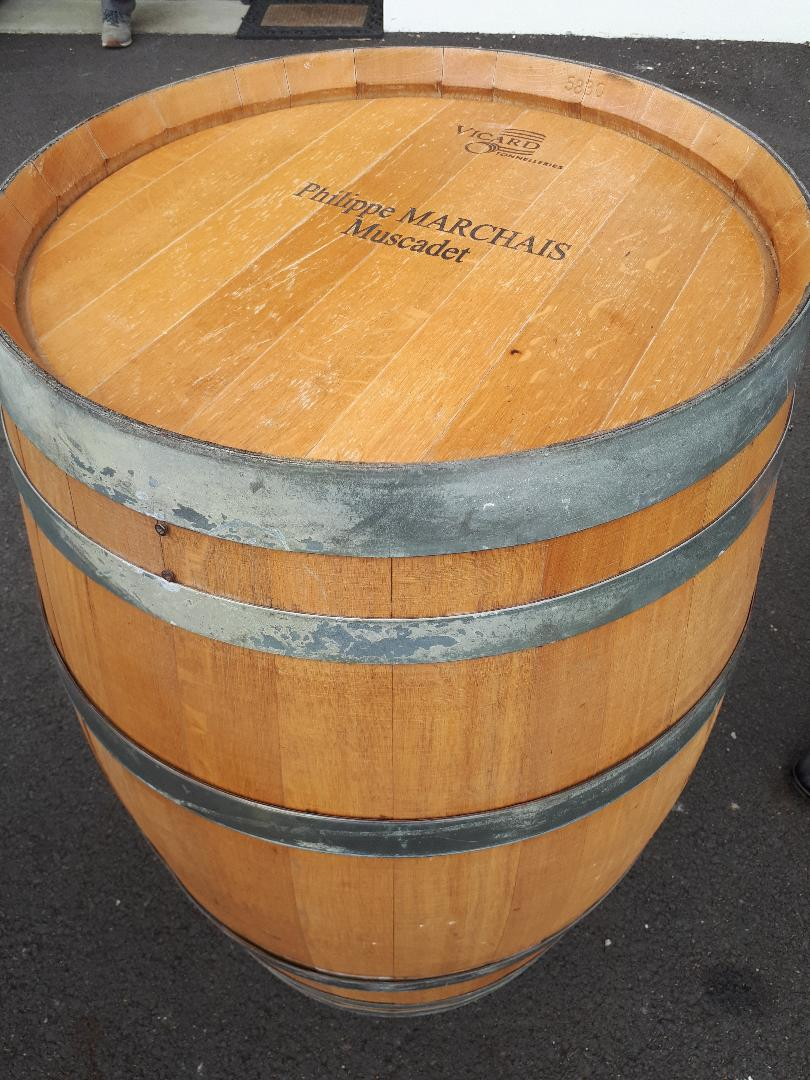 thouare vig marchais barrel tasting wines outside jul20