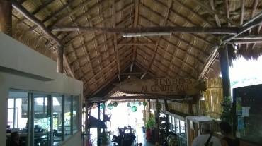 bacalar cenote azul inside jul14