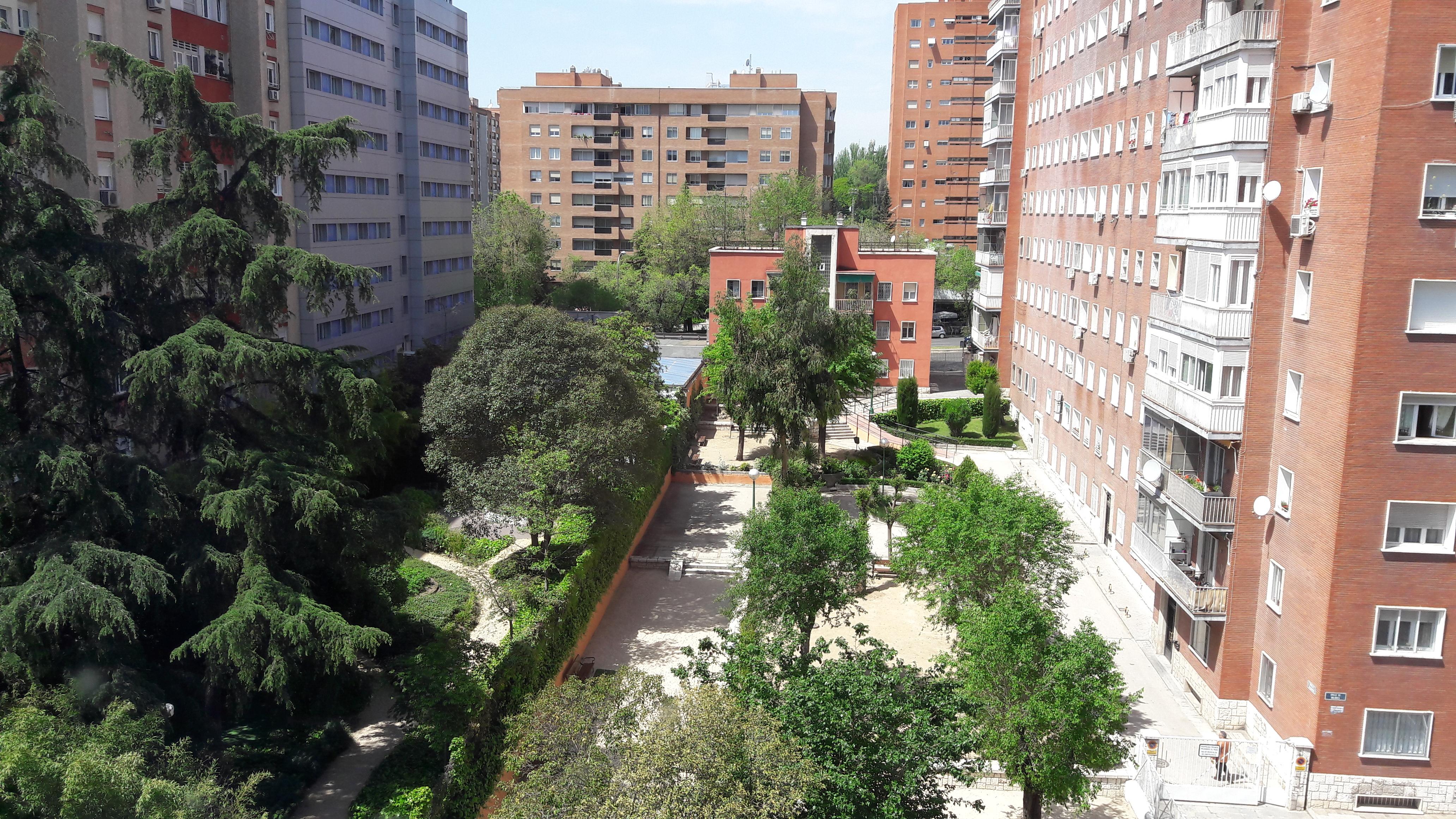 mad-ayre-gran-colon-hotel-backyard-apr17