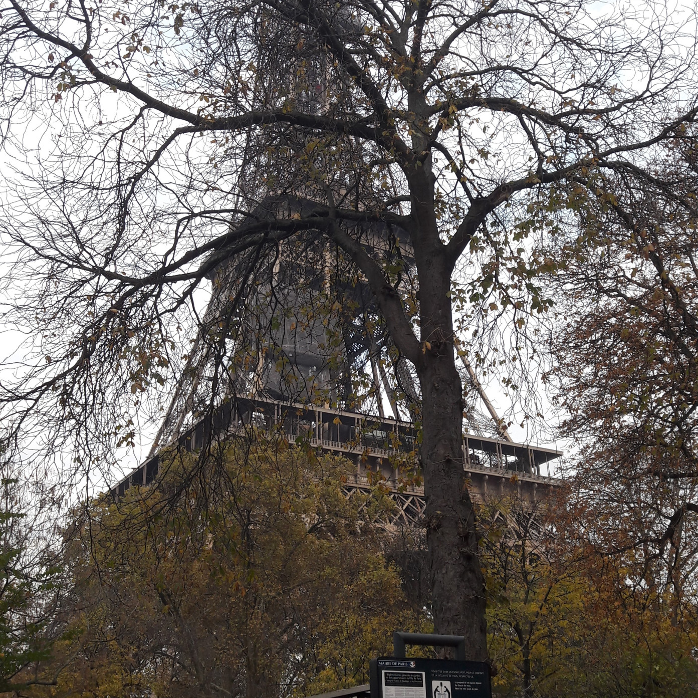 paris tour eiffel from garden quai-branly nov17