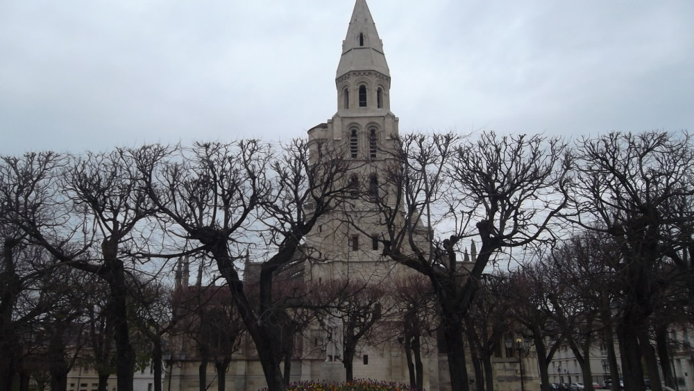 poissy-cat-nd-bell-tower