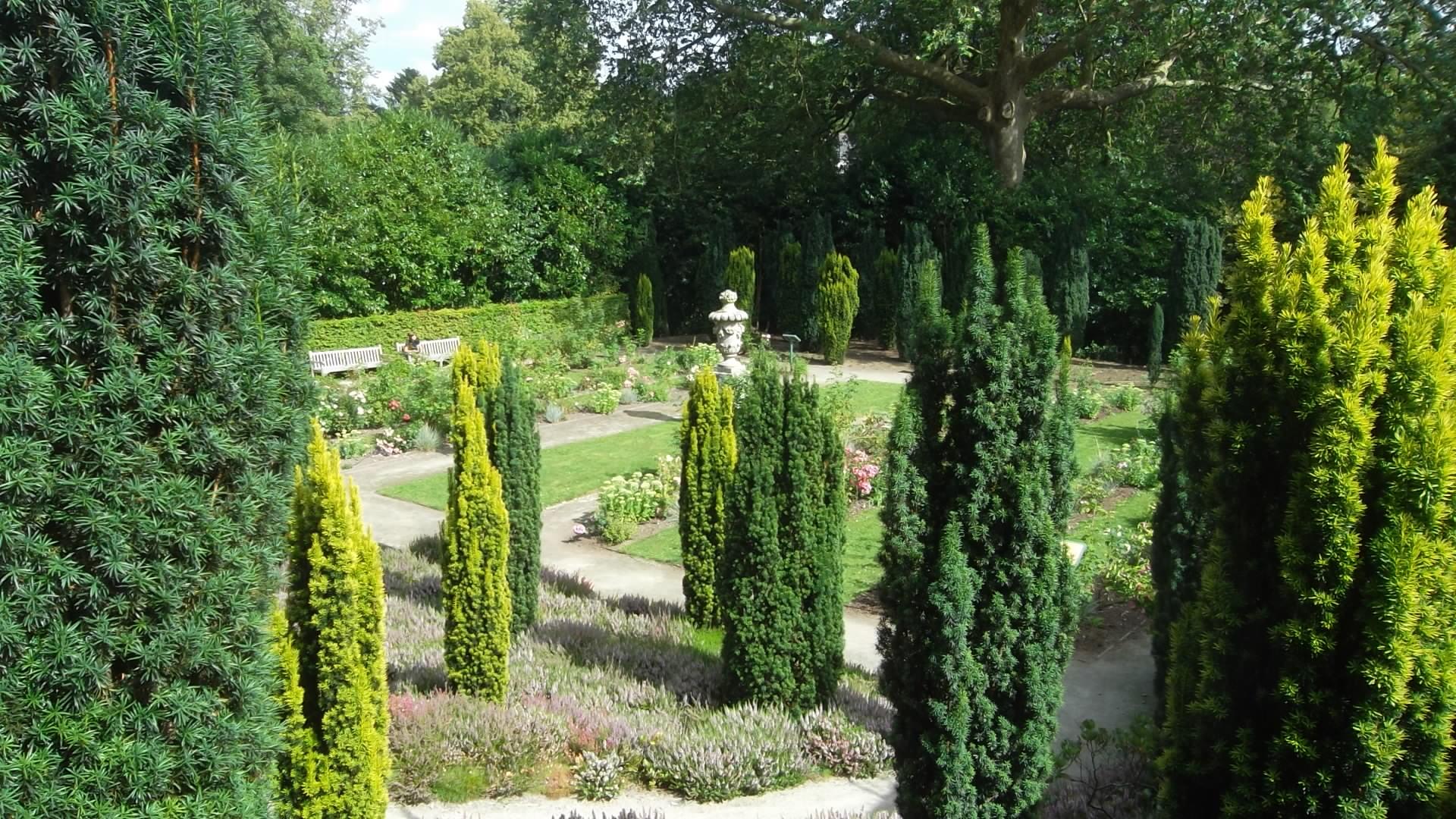 josselin-castle-rohan-rosarie-gardens-left-side-aug12