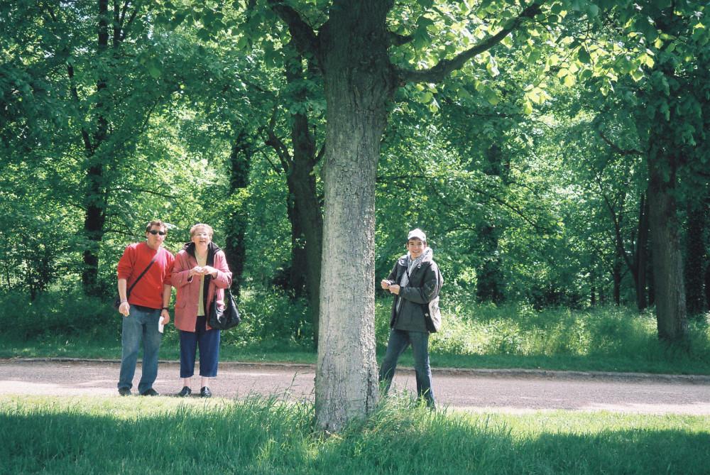 versailles-gardens-mai2010