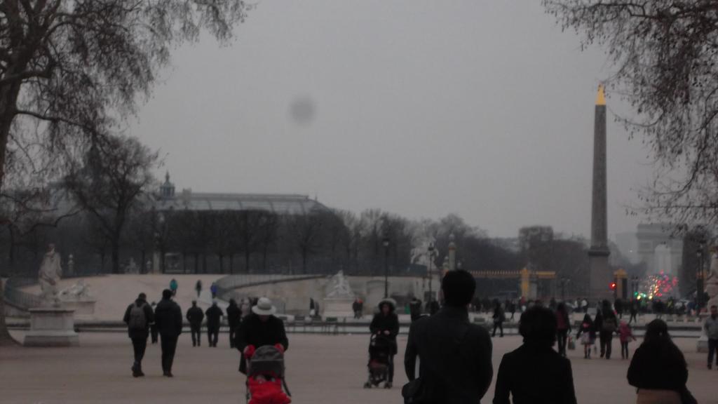 paris-jardin-des-tuileries-cheval-de-fer-bassin-octogonal-mar13
