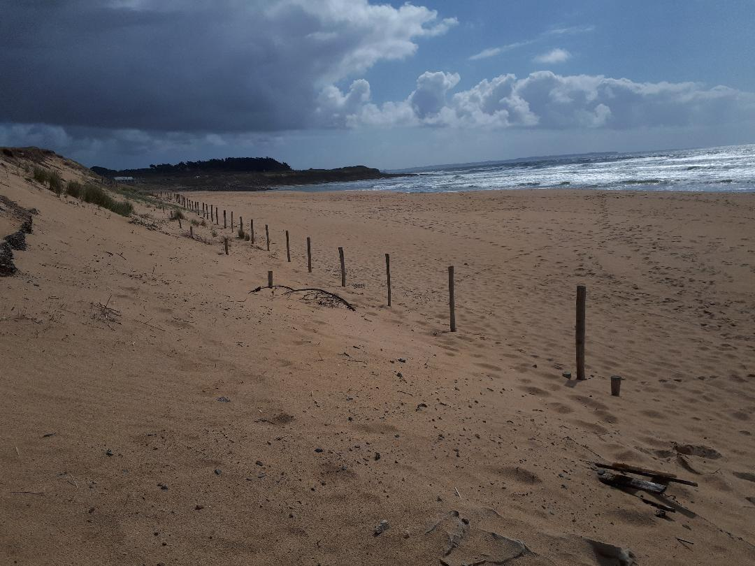 Guidel plages falaise to ocean mar21