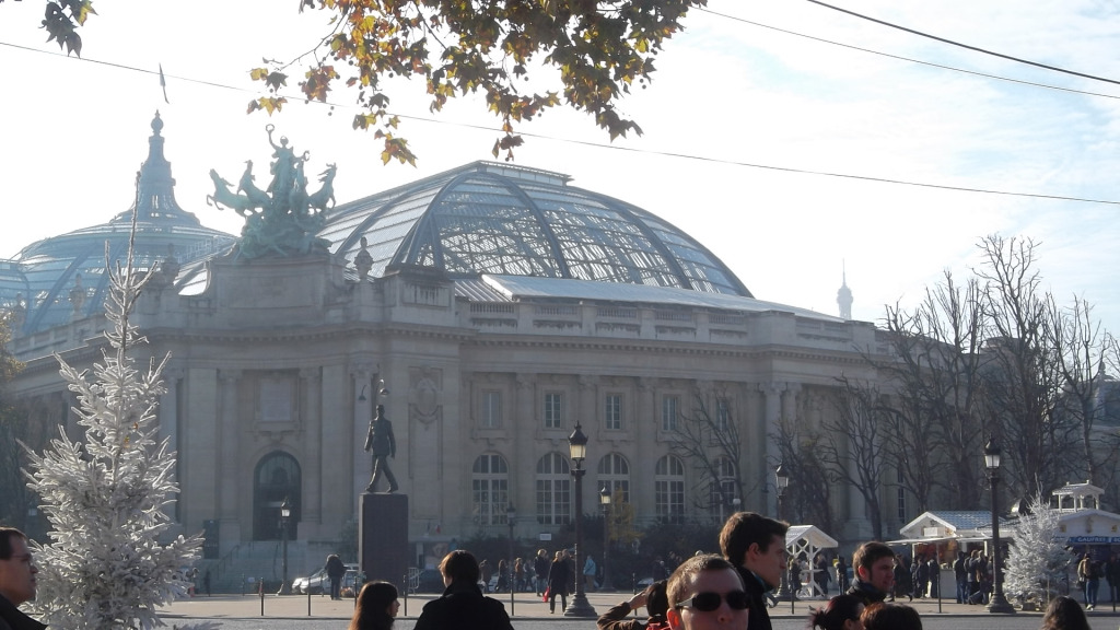 paris-grand-palais-nov11