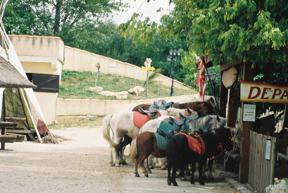 cadujac farm south bordeaux aug08