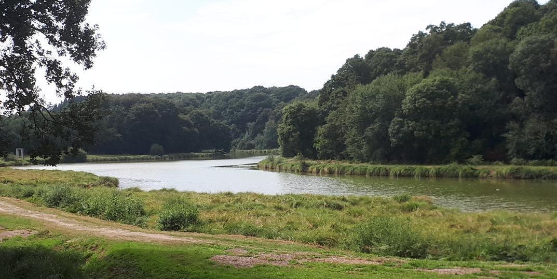 bignan-kerguehennec-river-to-left-deep-property-aug18