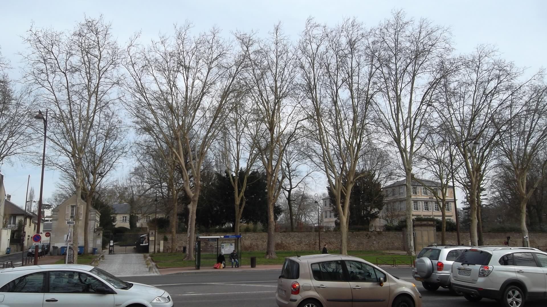 versailles-domaine-madame-elizabeth-acr-st-mar13