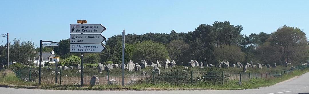 carnac-kermario-megaliths-stones-passing-d119-may18