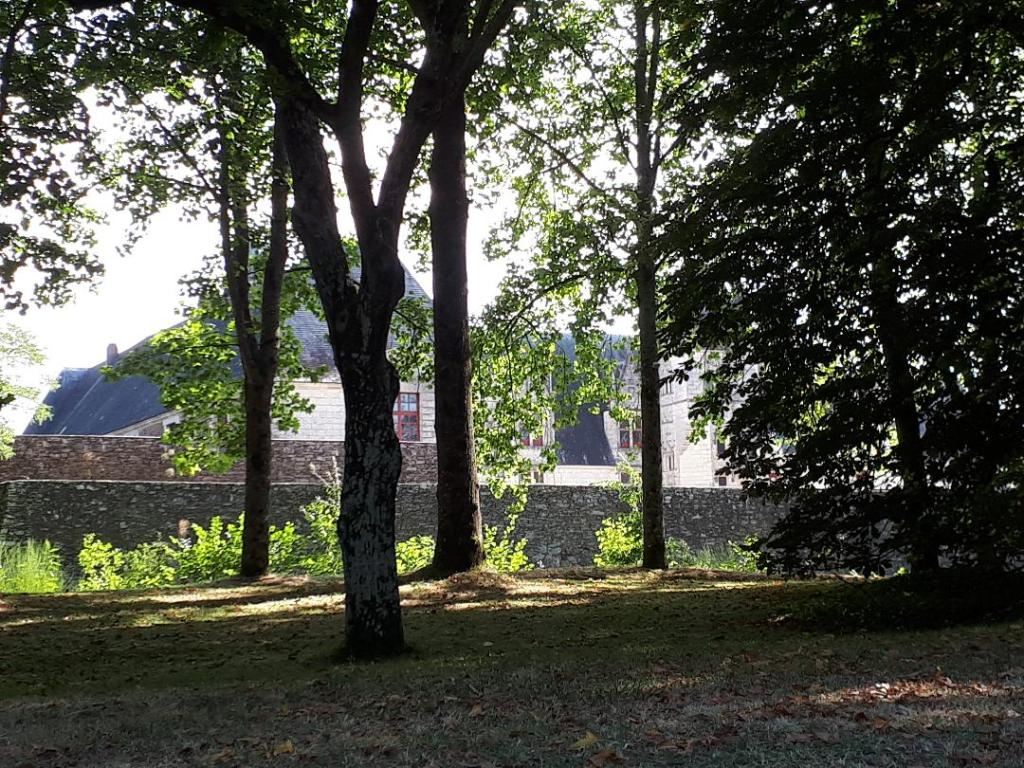 chateau-goulaine-view-castle-from-parking-aug18