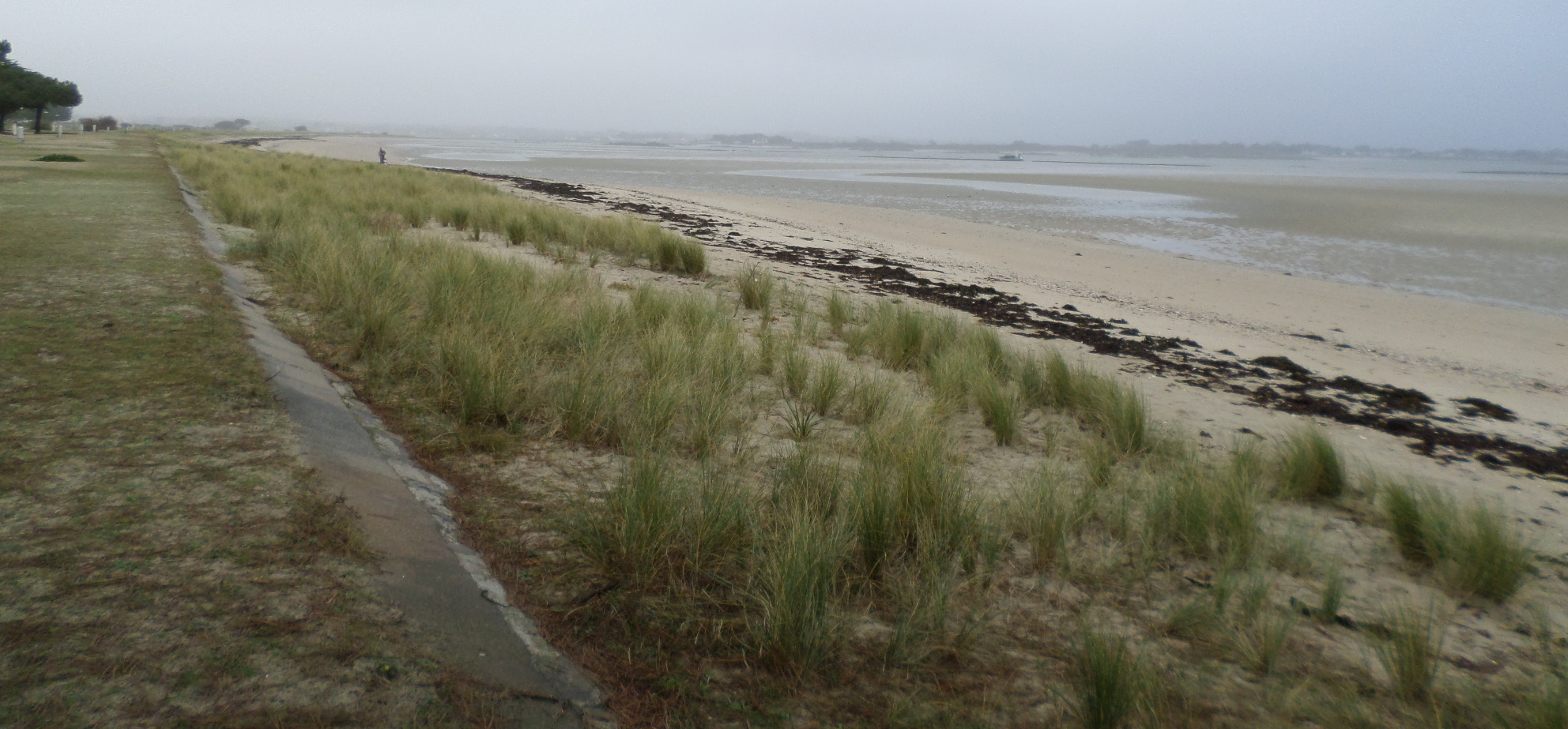 plouharnel-plage-de-sable-blanc-left-jan15