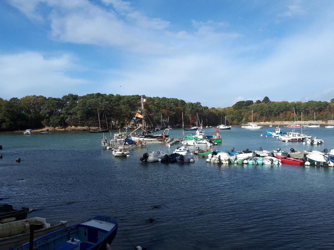 sene-port-anna-inner-harbor-nov18